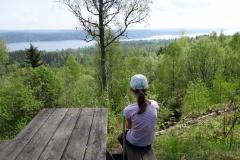 Skogsbacksstigen